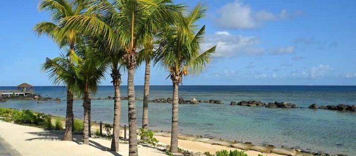 Que faire lors d'un voyage inédit sur l'île Maurice ?
